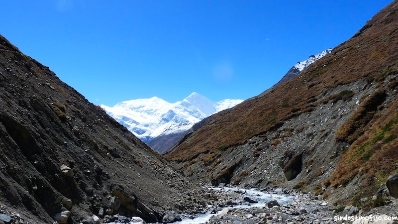 Thorung Pedi Trek
